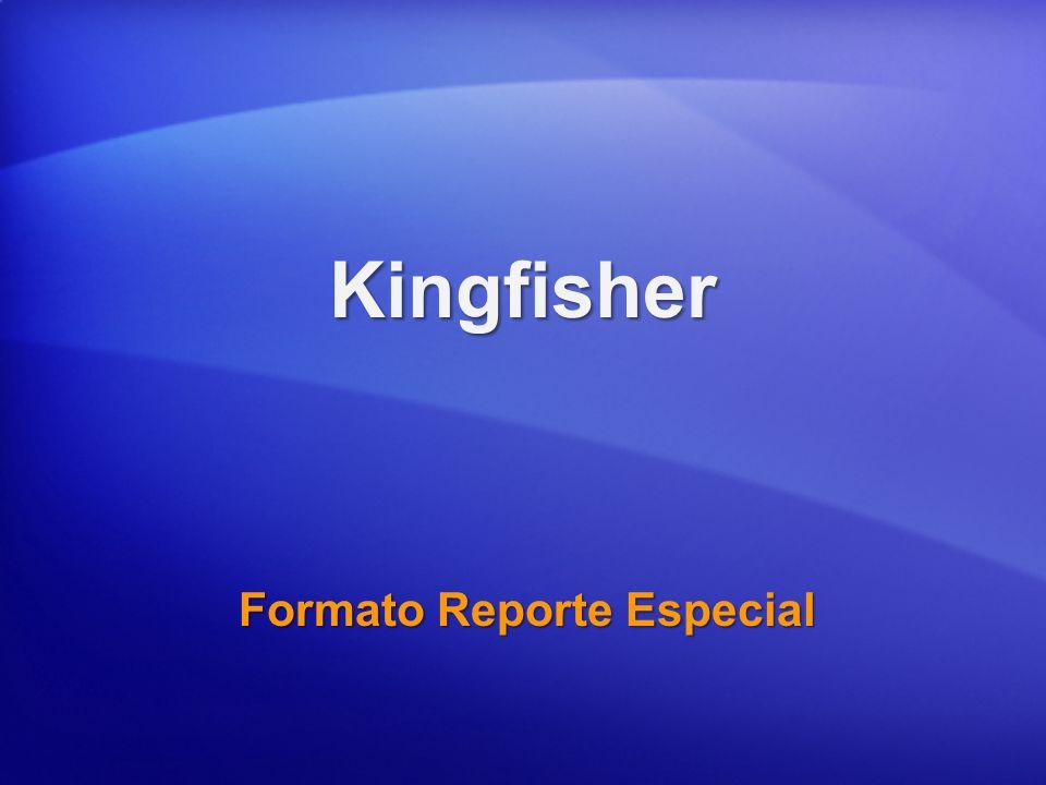 Kingfisher Formato Reporte Especial
