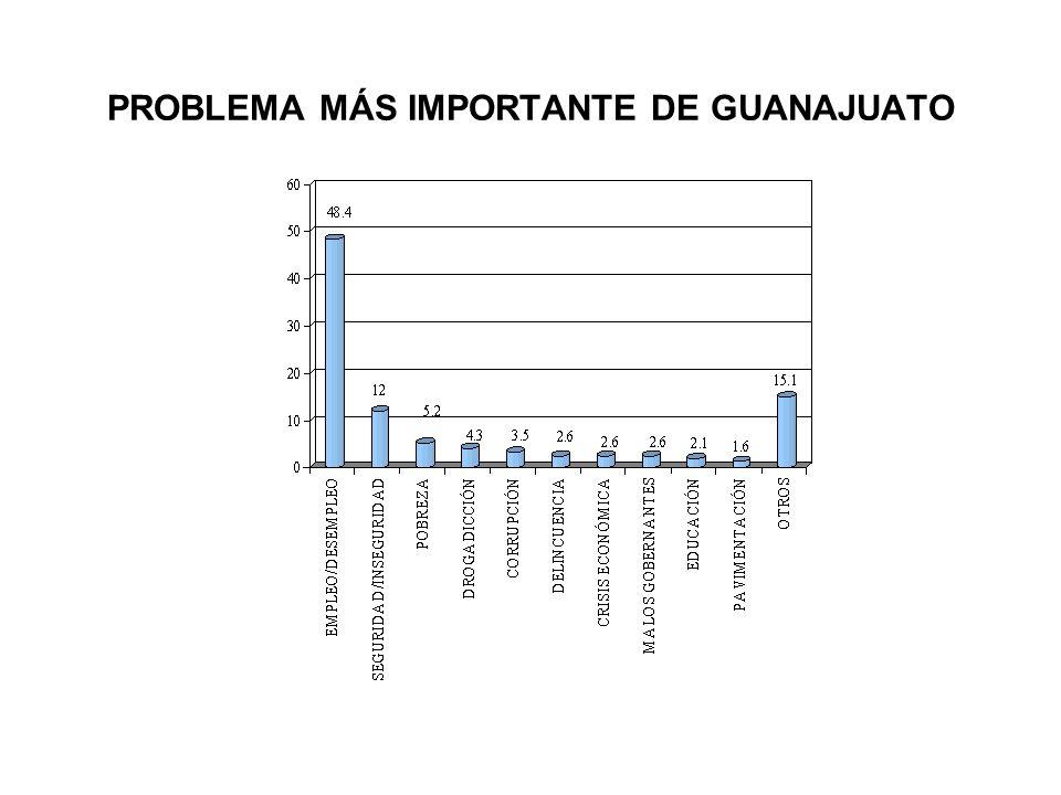 PROBLEMA MÁS IMPORTANTE DE GUANAJUATO