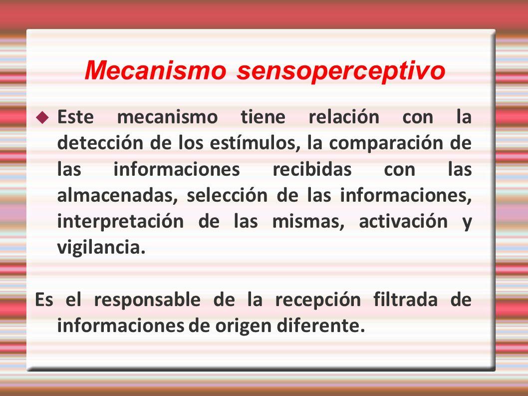 Mecanismo sensoperceptivo Este mecanismo tiene relación con la detección de los estímulos, la comparación de las informaciones recibidas con las almac