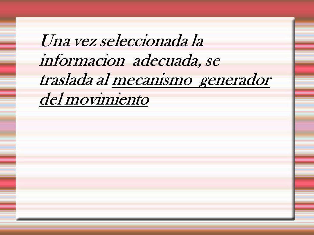 Una vez seleccionada la informacion adecuada, se traslada al mecanismo generador del movimiento