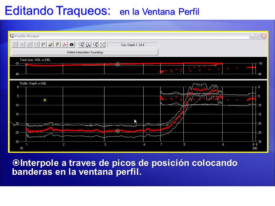 Editando Traqueos: en la Ventana Perfil Interpole a traves de picos de posición colocando banderas en la ventana perfil. Interpole a traves de picos d