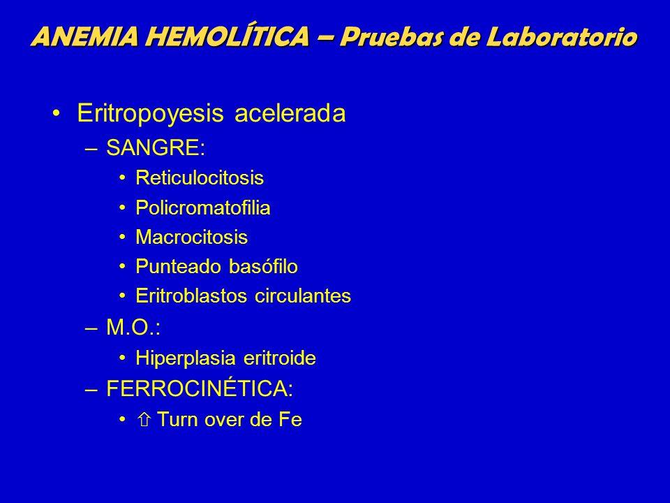 ANEMIA HEMOLÍTICA – Pruebas de Laboratorio Eritropoyesis acelerada –SANGRE: Reticulocitosis Policromatofilia Macrocitosis Punteado basófilo Eritroblas
