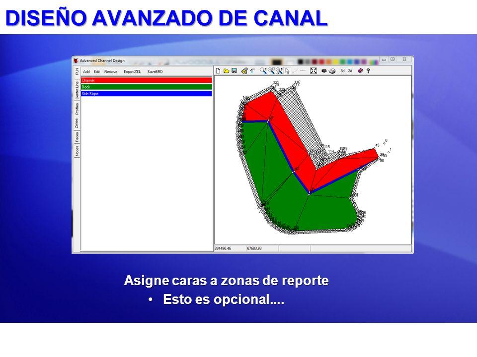 DISEÑO AVANZADO DE CANAL Asigne caras a zonas de reporte Esto es opcional....Esto es opcional....