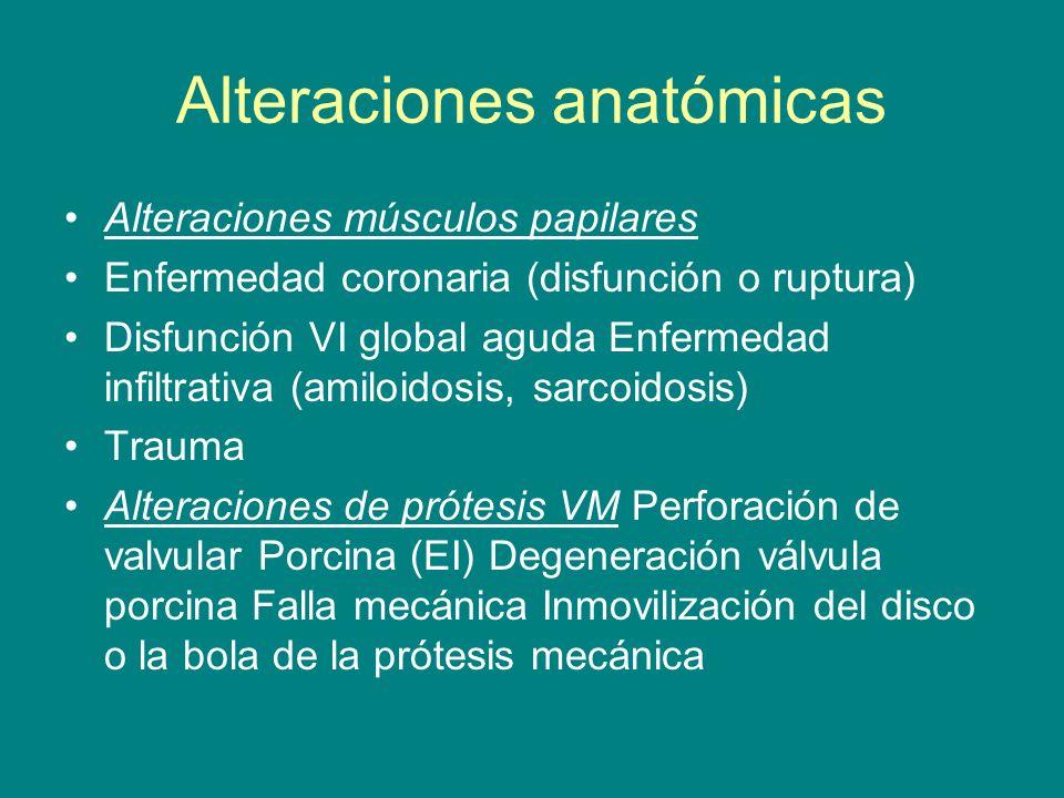 Alteraciones músculos papilares Enfermedad coronaria (disfunción o ruptura) Disfunción VI global aguda Enfermedad infiltrativa (amiloidosis, sarcoidos