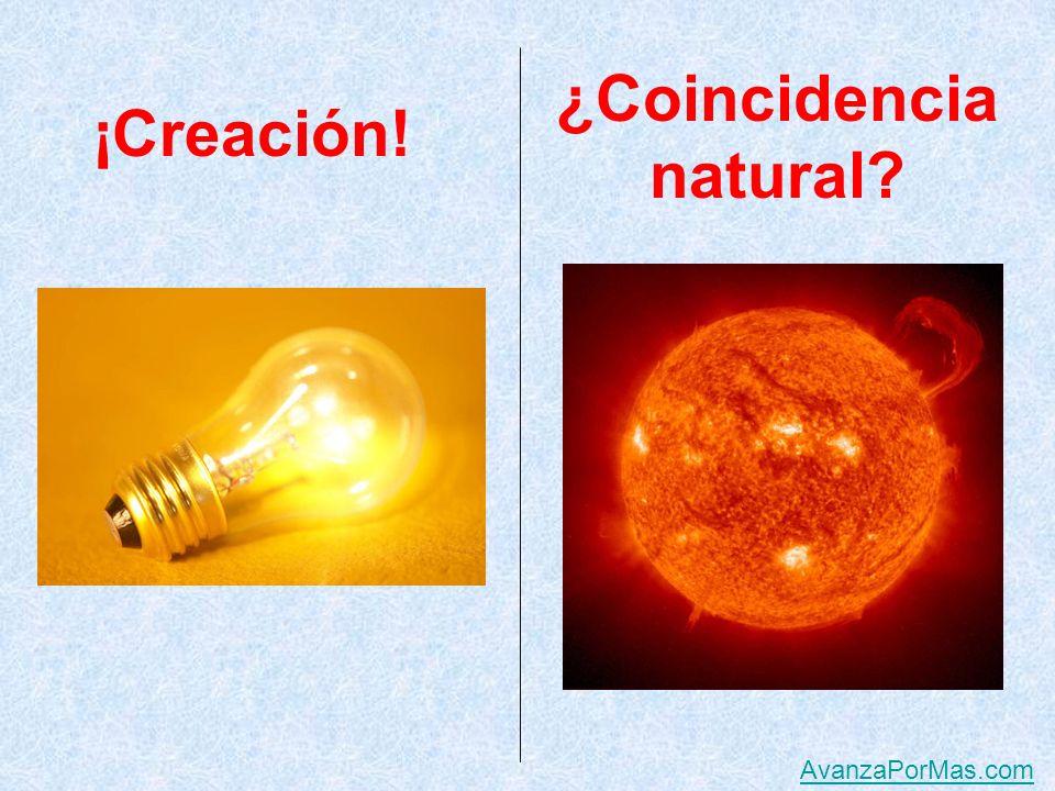 ¡Creación! ¿Coincidencia natural AvanzaPorMas.com