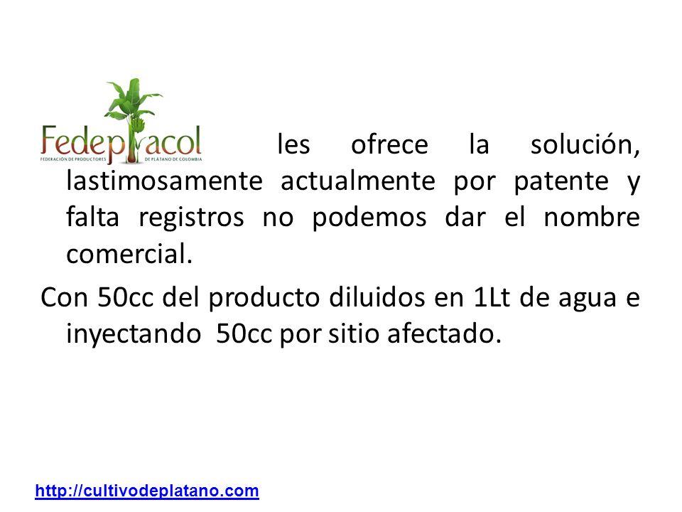 FEDEPLACOL les ofrece la solución, lastimosamente actualmente por patente y falta registros no podemos dar el nombre comercial. Con 50cc del producto