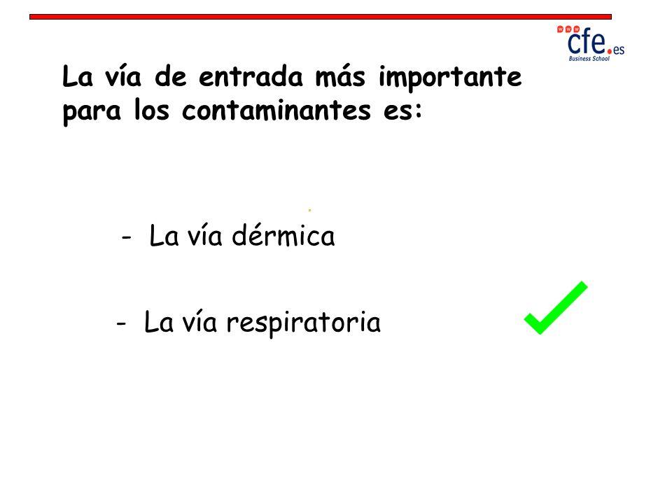 La vía de entrada más importante para los contaminantes es: - La vía dérmica - La vía respiratoria