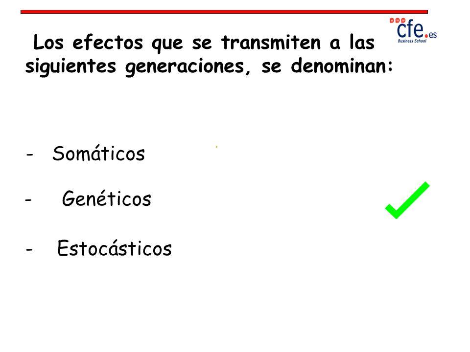 Los efectos que se transmiten a las siguientes generaciones, se denominan: - Somáticos - Genéticos - Estocásticos