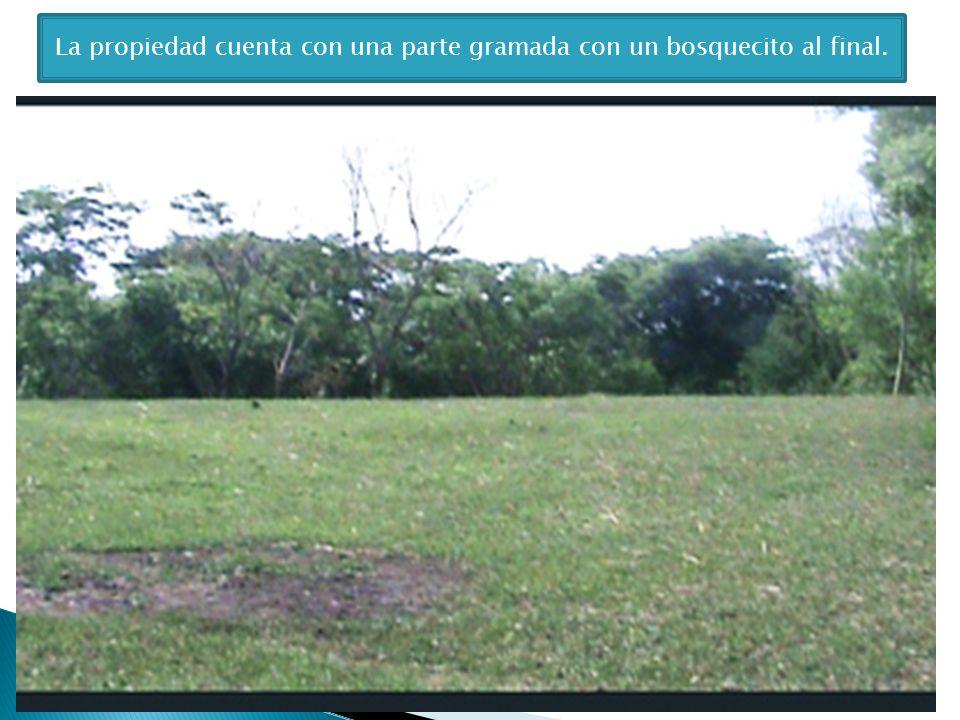 La propiedad cuenta con una parte gramada con un bosquecito al final.