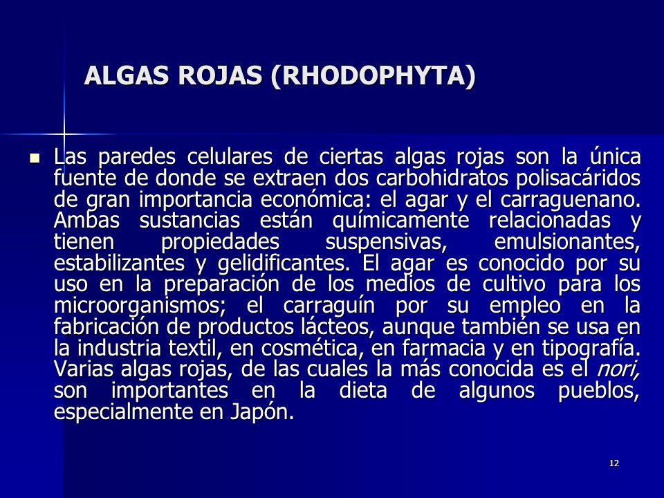 12 ALGAS ROJAS (RHODOPHYTA) Las paredes celulares de ciertas algas rojas son la única fuente de donde se extraen dos carbohidratos polisacáridos de gr