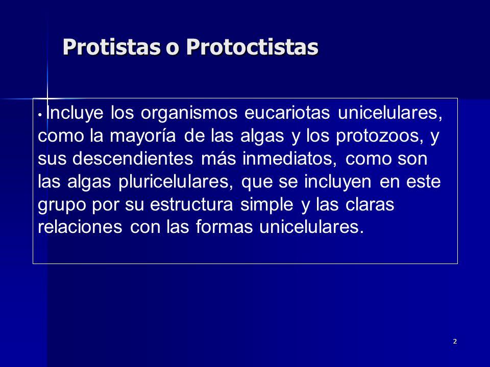 2 Protistas o Protoctistas Incluye los organismos eucariotas unicelulares, como la mayoría de las algas y los protozoos, y sus descendientes más inmed