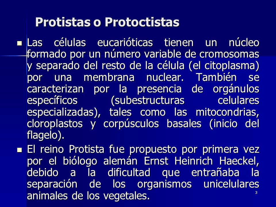 3 Protistas o Protoctistas Las células eucarióticas tienen un núcleo formado por un número variable de cromosomas y separado del resto de la célula (e