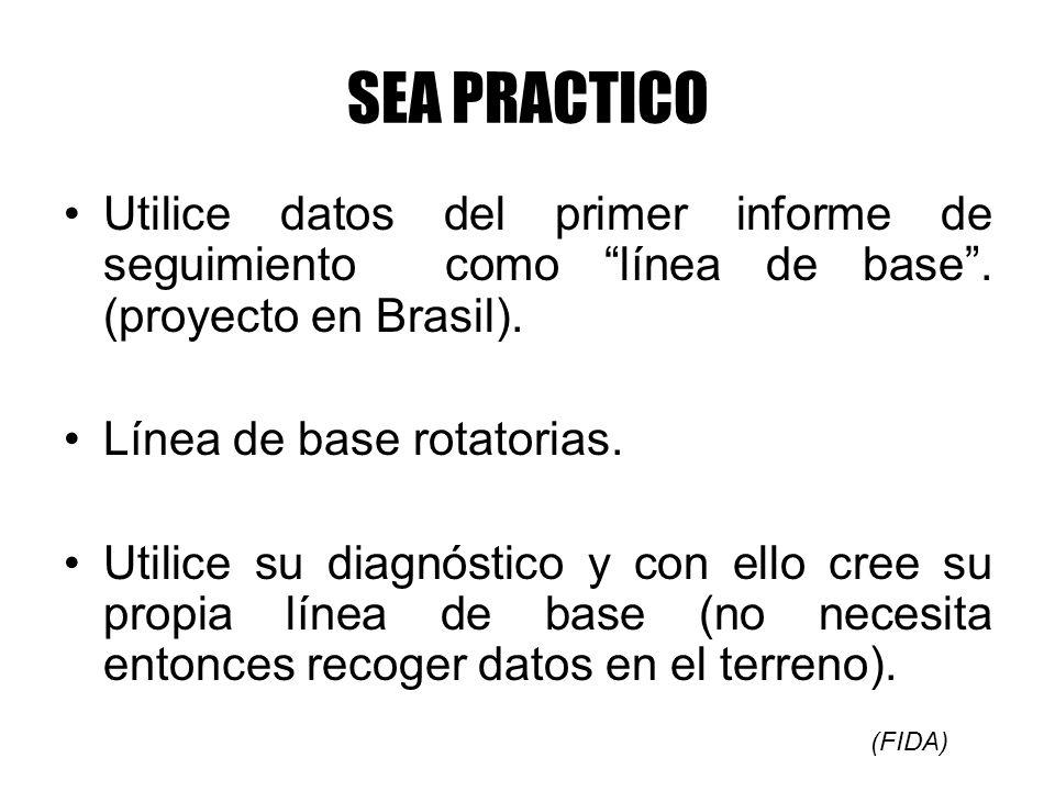 SEA PRACTICO Utilice datos del primer informe de seguimiento como línea de base. (proyecto en Brasil). Línea de base rotatorias. Utilice su diagnóstic