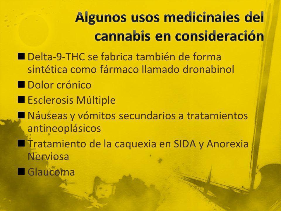 Delta-9-THC se fabrica también de forma sintética como fármaco llamado dronabinol Dolor crónico Esclerosis Múltiple Náuseas y vómitos secundarios a tr