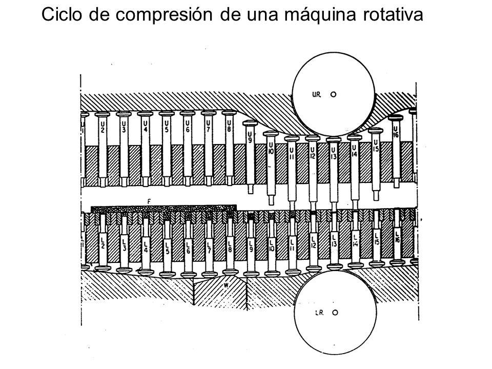Ciclo de compresión de una máquina rotativa