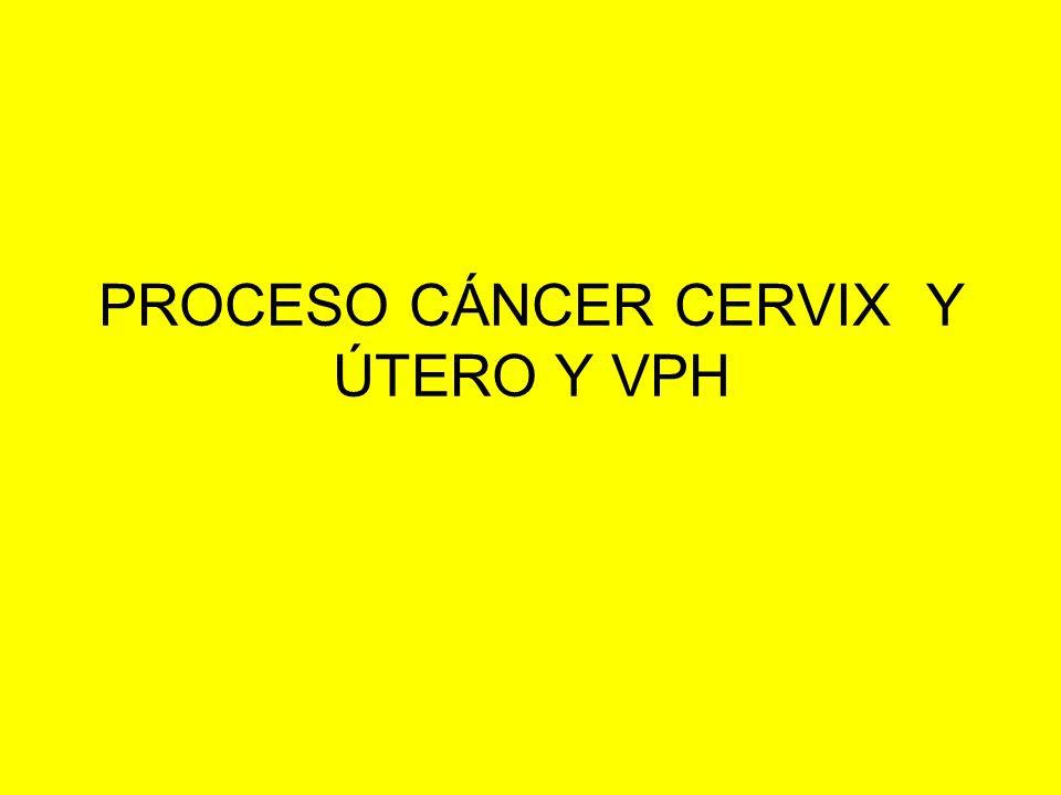 PROCESO CÁNCER CERVIX Y ÚTERO Y VPH