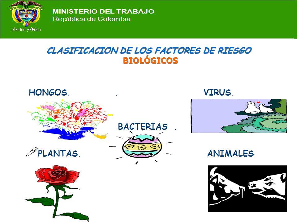 CLASIFICACION DE LOS FACTORES DE RIESGO ELECTRICOS Contacto directo. Contacto indirecto. Electricidad estática. INCENDIO Y EXPLOSION MATERIALES INFLAM