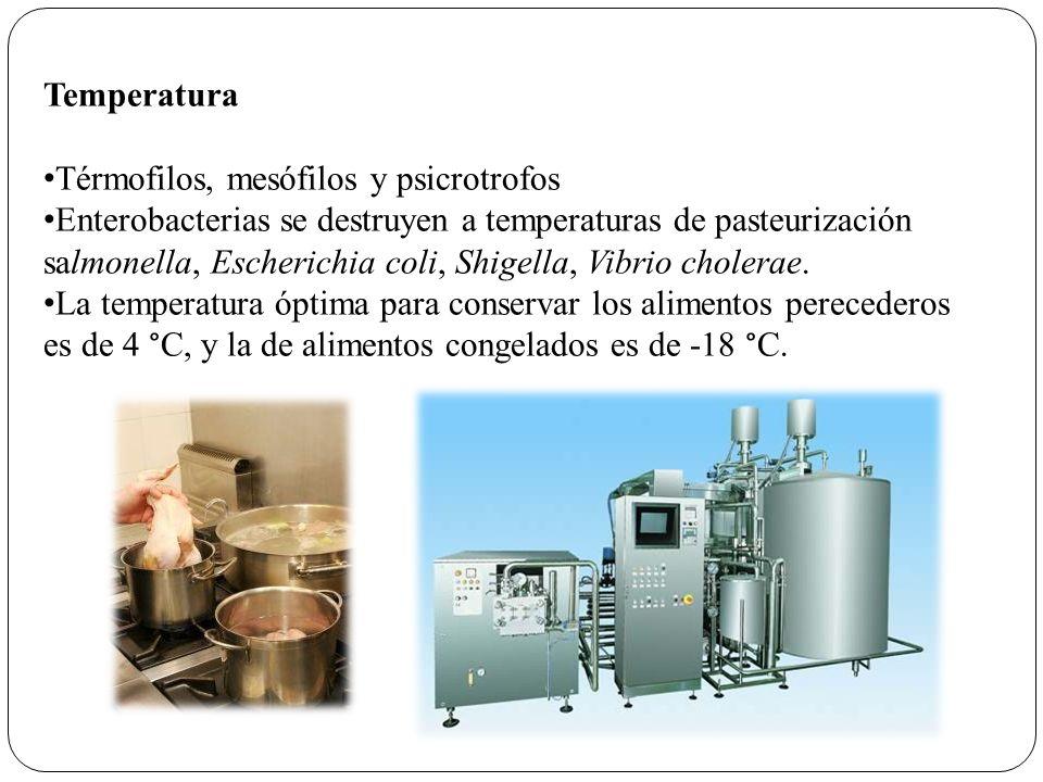 Temperatura Térmofilos, mesófilos y psicrotrofos Enterobacterias se destruyen a temperaturas de pasteurización salmonella, Escherichia coli, Shigella,