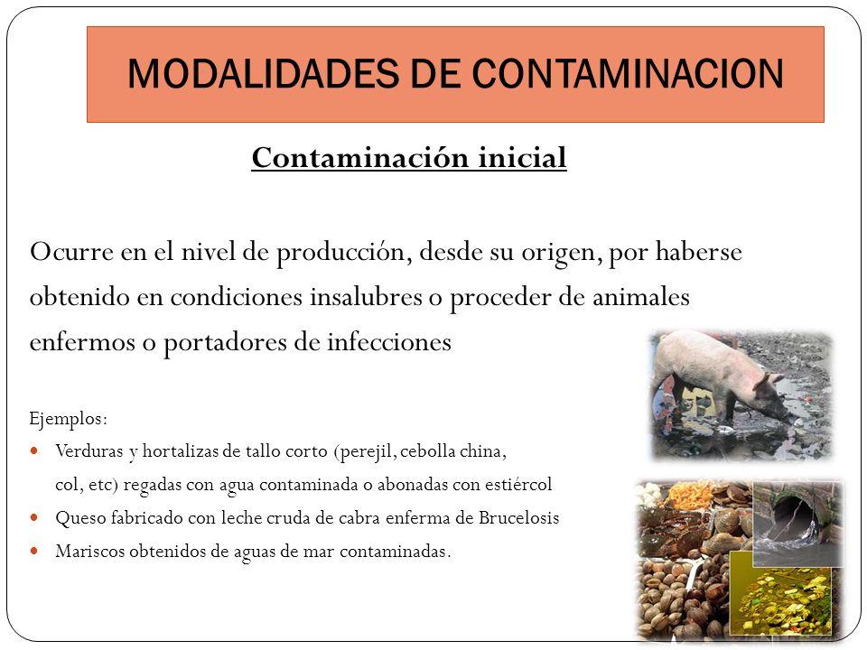 MODALIDADES DE CONTAMINACION Contaminación inicial Ocurre en el nivel de producción, desde su origen, por haberse obtenido en condiciones insalubres o