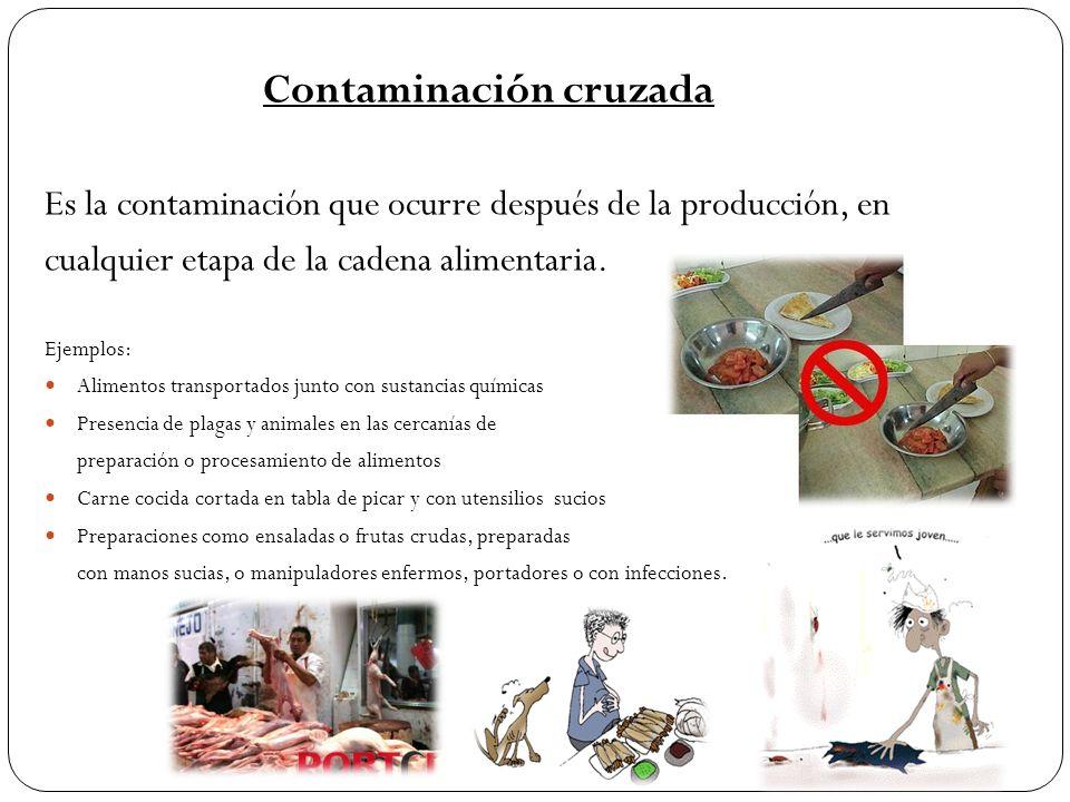 Contaminación cruzada Es la contaminación que ocurre después de la producción, en cualquier etapa de la cadena alimentaria. Ejemplos: Alimentos transp