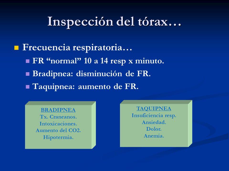 Inspección del tórax… Frecuencia respiratoria… FR normal 10 a 14 resp x minuto. Bradipnea: disminución de FR. Taquipnea: aumento de FR. BRADIPNEA Tx.