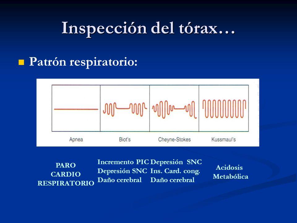 Inspección del tórax… Patrón respiratorio: PARO CARDIO RESPIRATORIO Incremento PIC Depresión SNC Daño cerebral Depresión SNC Ins. Card. cong. Daño cer