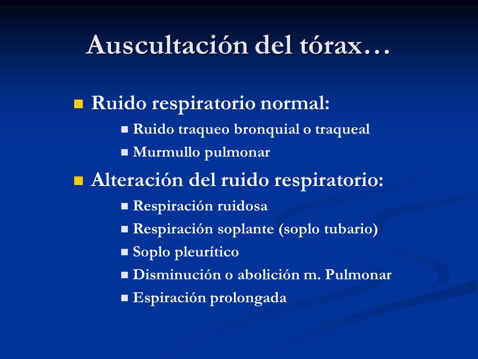 Auscultación del tórax… Ruido respiratorio normal: Ruido traqueo bronquial o traqueal Murmullo pulmonar Alteración del ruido respiratorio: Respiración