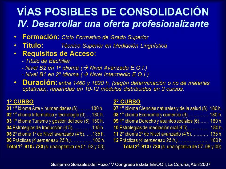 Guillermo González del Pozo / V Congreso Estatal EEOOII, La Coruña, Abril 2007 VÍAS POSIBLES DE CONSOLIDACIÓN IV. Desarrollar una oferta profesionaliz