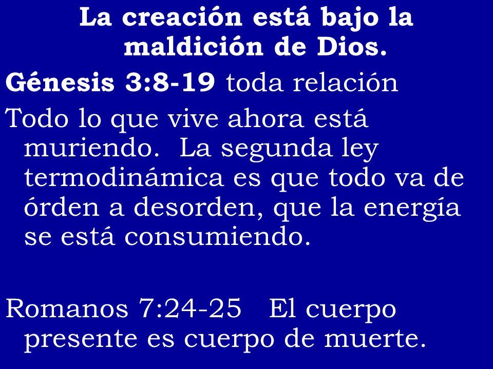 La creación está bajo la maldición de Dios. Génesis 3:8-19 toda relación Todo lo que vive ahora está muriendo. La segunda ley termodinámica es que tod
