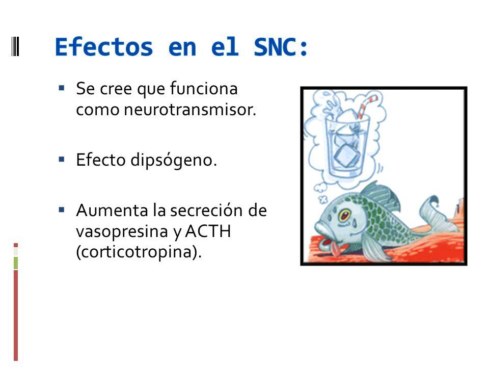 Se cree que funciona como neurotransmisor. Efecto dipsógeno. Aumenta la secreción de vasopresina y ACTH (corticotropina).