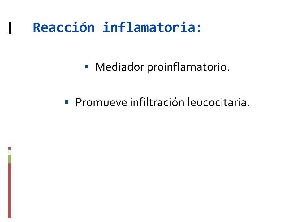 Reacción inflamatoria: Mediador proinflamatorio. Promueve infiltración leucocitaria.
