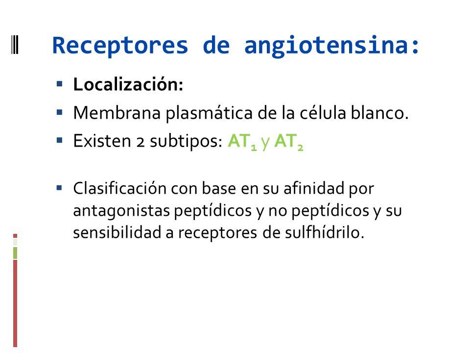 Receptores de angiotensina: Localización: Membrana plasmática de la célula blanco. Existen 2 subtipos: AT 1 y AT 2 Clasificación con base en su afinid