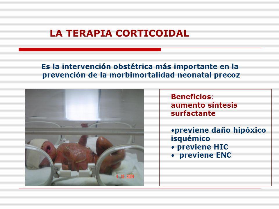 LA TERAPIA CORTICOIDAL Es la intervención obstétrica más importante en la prevención de la morbimortalidad neonatal precoz Beneficios: aumento síntesi