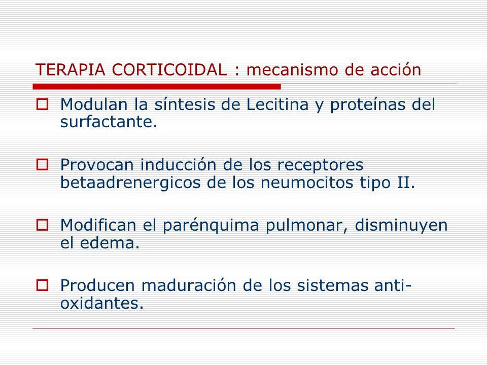 TERAPIA CORTICOIDAL : mecanismo de acción Modulan la síntesis de Lecitina y proteínas del surfactante. Provocan inducción de los receptores betaadrene