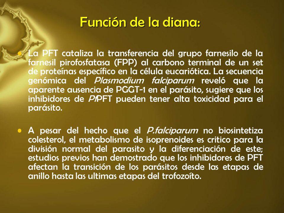 Función de la diana: La PFT cataliza la transferencia del grupo farnesilo de la farnesil pirofosfatasa (FPP) al carbono terminal de un set de proteína