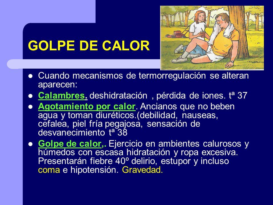 GOLPE DE CALOR Cuando mecanismos de termorregulación se alteran aparecen: Calambres. deshidratación, pérdida de iones. tª 37 Agotamiento por calor. An