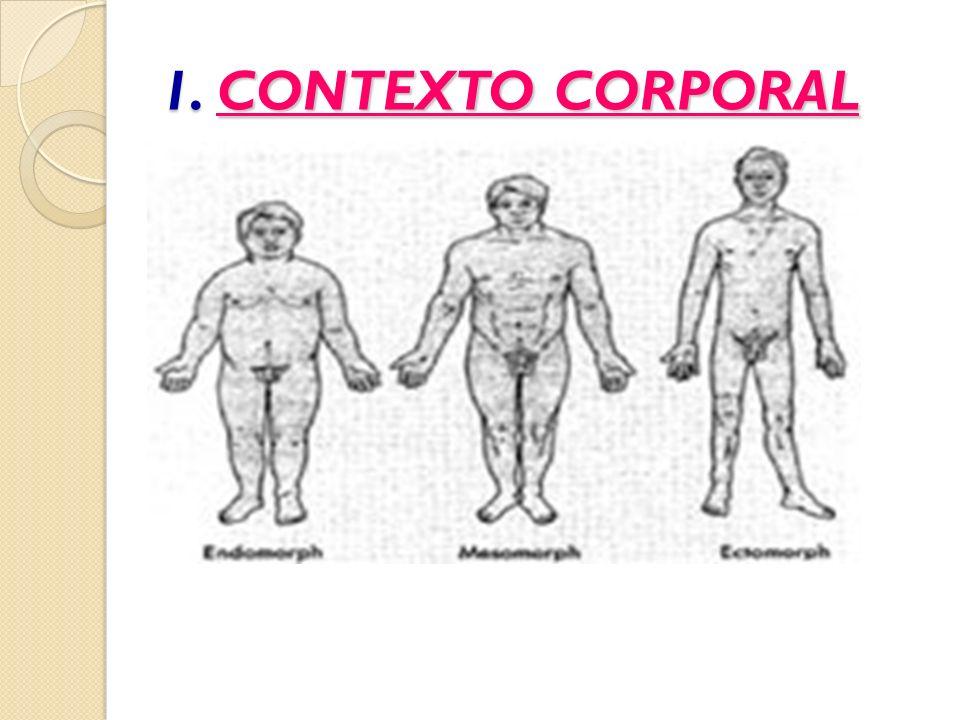 1. CONTEXTO CORPORAL