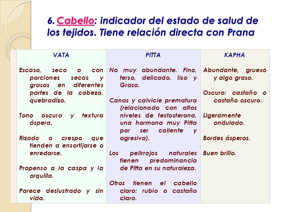 6. Cabello : indicador del estado de salud de los tejidos. Tiene relación directa con Prana 6. Cabello: indicador del estado de salud de los tejidos.