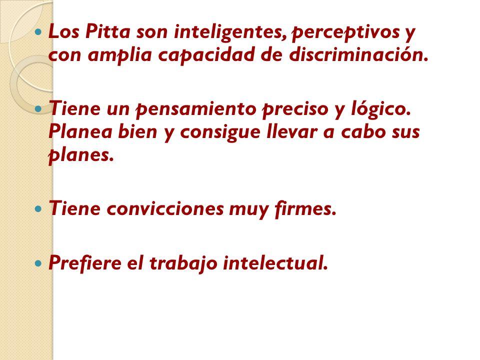 Los Pitta son inteligentes, perceptivos y con amplia capacidad de discriminación. Tiene un pensamiento preciso y lógico. Planea bien y consigue llevar