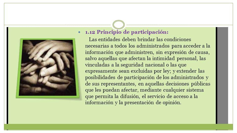 1.12 Principio de participación: Las entidades deben brindar las condiciones necesarias a todos los administrados para acceder a la información que ad