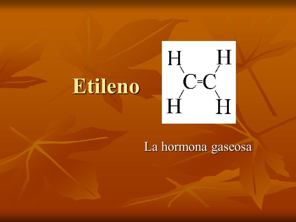 Etileno La hormona gaseosa