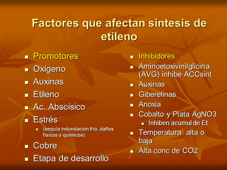 Factores que afectan síntesis de etileno Promotores Promotores Oxígeno Oxígeno Auxinas Auxinas Etileno Etileno Ac. Abscísico Ac. Abscísico Estrés Estr