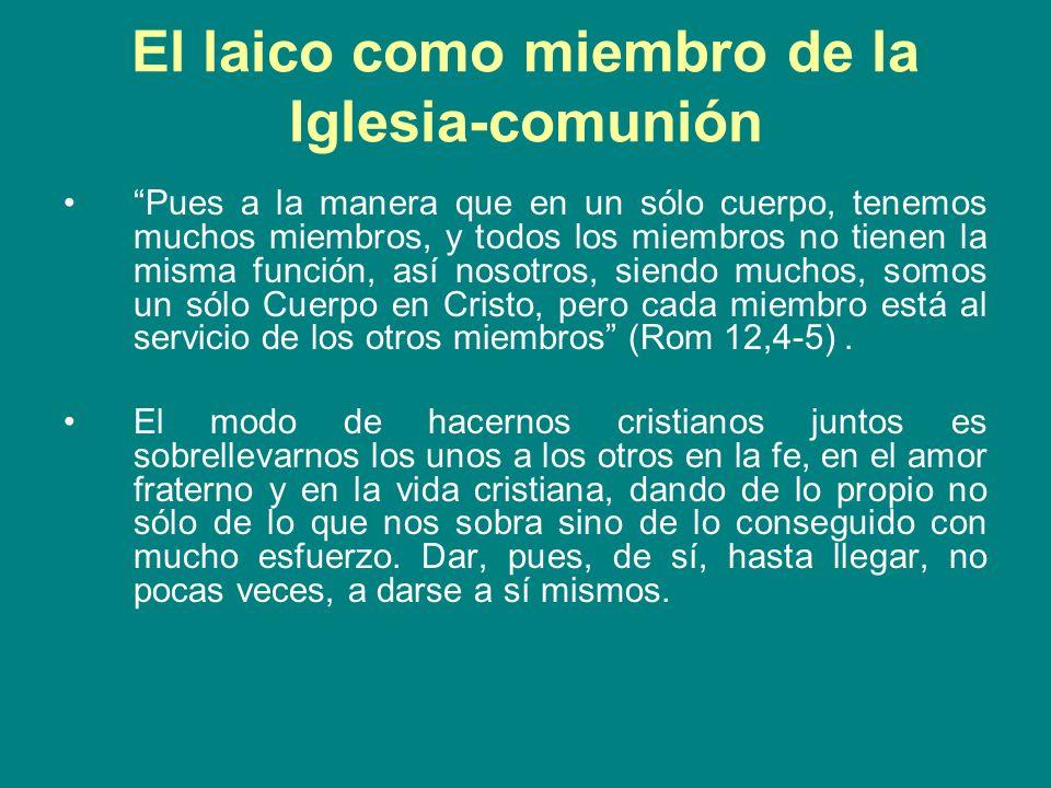 El laico como miembro de la Iglesia-comunión Pues a la manera que en un sólo cuerpo, tenemos muchos miembros, y todos los miembros no tienen la misma
