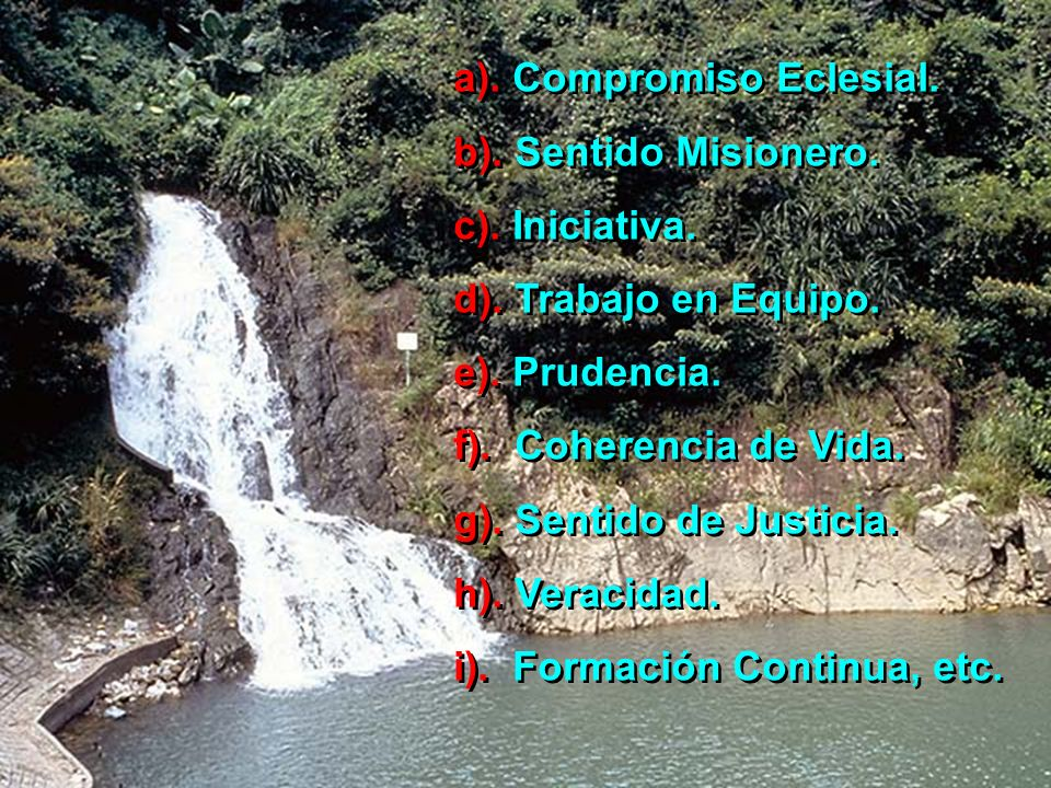 a).Compromiso Eclesial. b). Sentido Misionero. c).