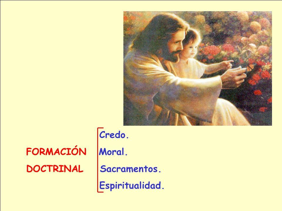 FORMACIÓN DEL CATEQUISTA 1. Formación Doctrinal. 2. Formación Espiritual. 3. Formación Metodológica. 4. Formación Humana. 1. Formación Doctrinal. 2. F