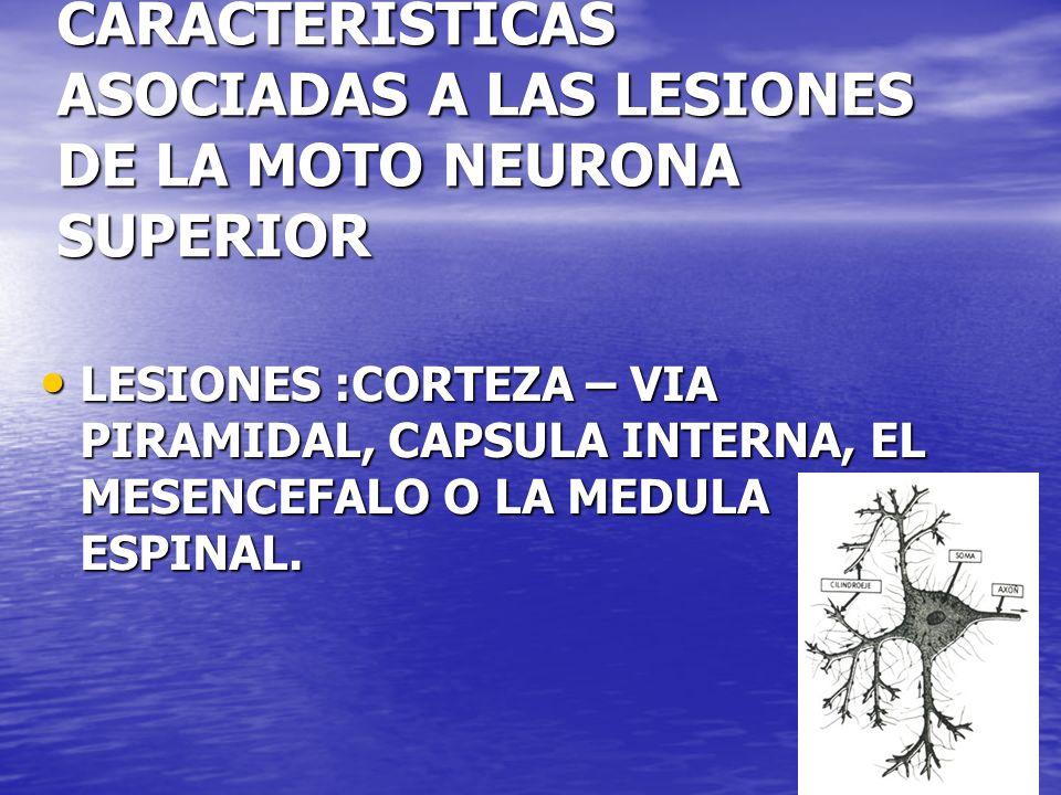 CARACTERISTICAS ASOCIADAS A LAS LESIONES DE LA MOTO NEURONA SUPERIOR LESIONES :CORTEZA – VIA PIRAMIDAL, CAPSULA INTERNA, EL MESENCEFALO O LA MEDULA ES