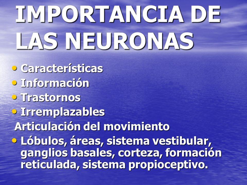 IMPORTANCIA DE LAS NEURONAS Características Características Información Información Trastornos Trastornos Irremplazables Irremplazables Articulación d