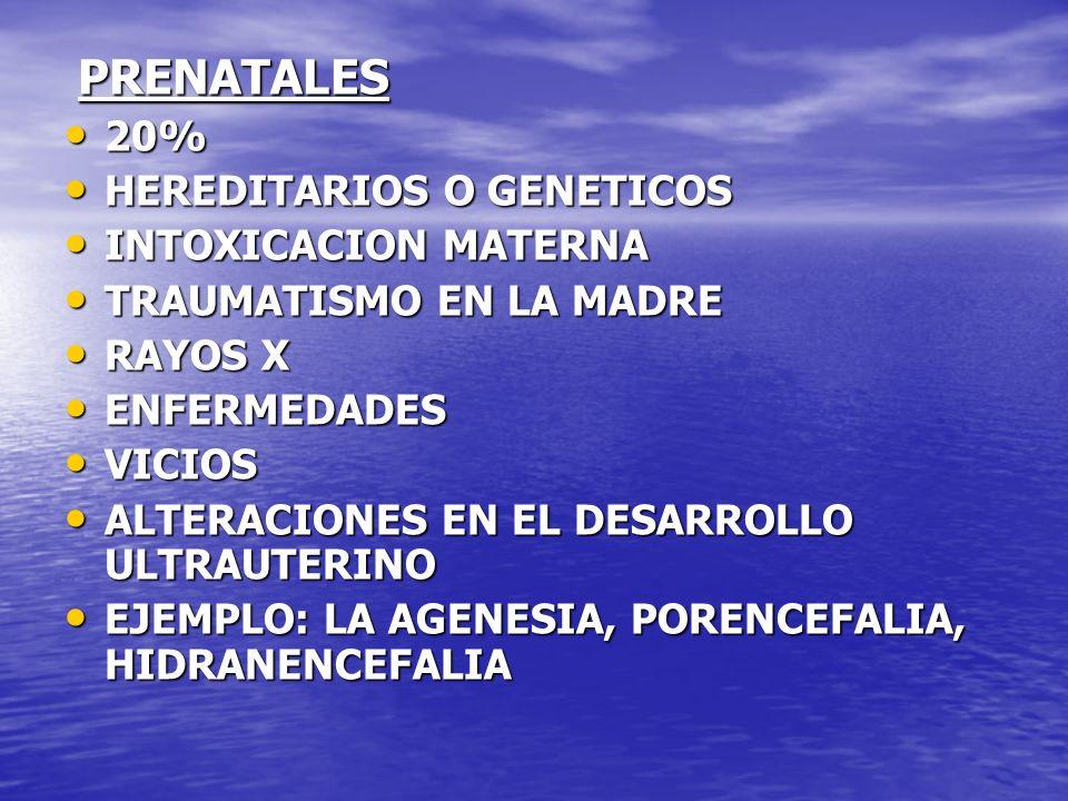 PRENATALES PRENATALES 20% 20% HEREDITARIOS O GENETICOS HEREDITARIOS O GENETICOS INTOXICACION MATERNA INTOXICACION MATERNA TRAUMATISMO EN LA MADRE TRAU