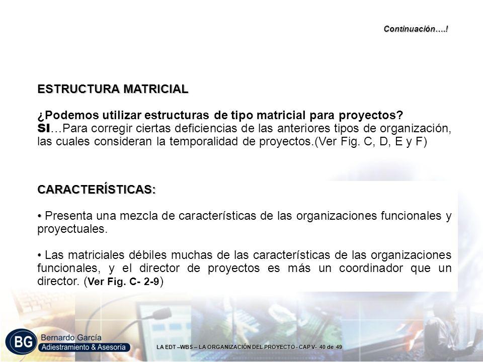 LA EDT –WBS – LA ORGANIZACIÓN DEL PROYECTO - CAP V- 40 de 49 CARACTERÍSTICAS: Presenta una mezcla de características de las organizaciones funcionales