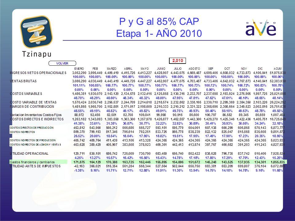 P y G al 85% CAP Etapa 1- AÑO 2010